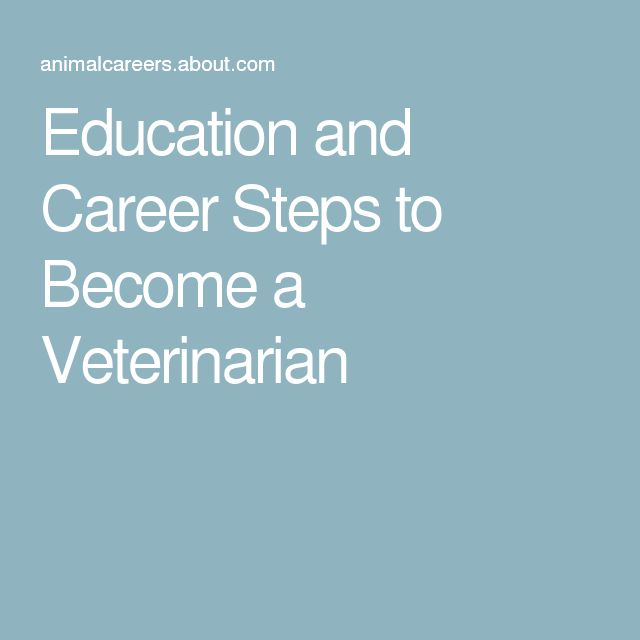 Education and Career Steps to Become a Veterinarian