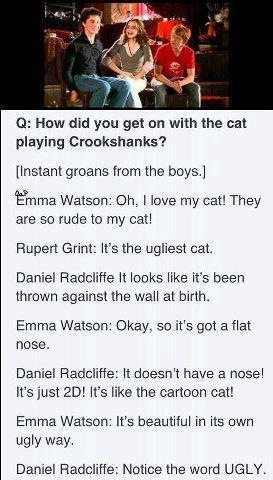 I love How even in real life Emma/hermione stands up for and loves crookshanks and Rupert/Ron just hates him and calls him ugly.