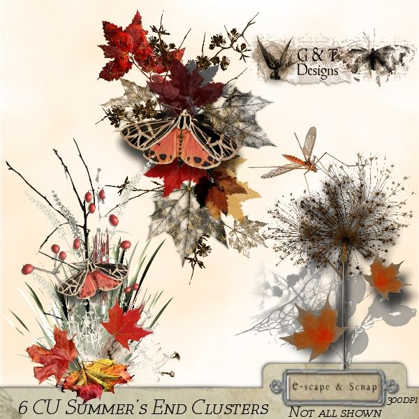 Beautiful CU Clusters in both rich and soft autumn colours. 6 PNG Files. 300dpi CU/PU OK Special introductory offer $4.00 for one week - ends 12 September 2013 **IF YOU WISH TO DOWNLOAD THE PACK FILES FOR SERIF CRAFT ARTIST - DOWNLOAD FILE 2 ONLY** Download the file and unzip it - right click and extract the pack file. Open the file and copy then paste to wherever you store you other digikits. Restart Craft Artist and it should be in your digikits