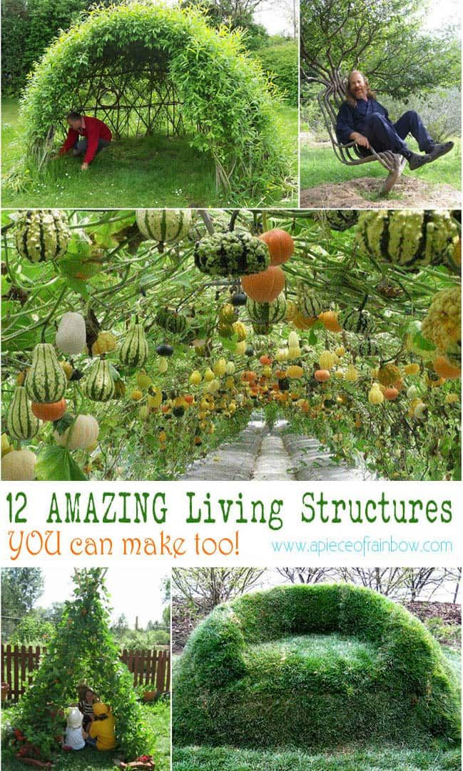 Tutorials and ideas on how to create magical living structures such as grape tunnel, bean teepee, grass sofa, willow dome, living fence, and much more! - A Piece Of Rainbow