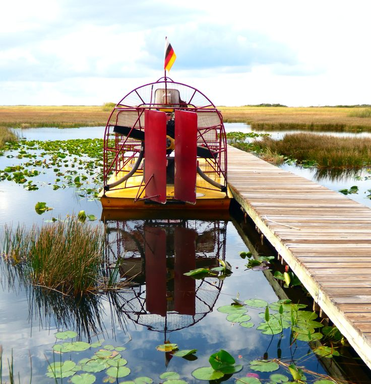 Florida Everglades Airboat Adventure - I remember going on one of these, it was great fun!