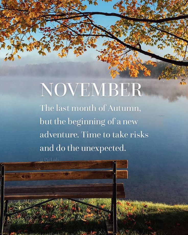 A new month a new chapter. Hello November - surprise us! - #PicLab #HelloNovember
