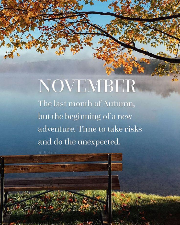 Hello November   Surprise Us!