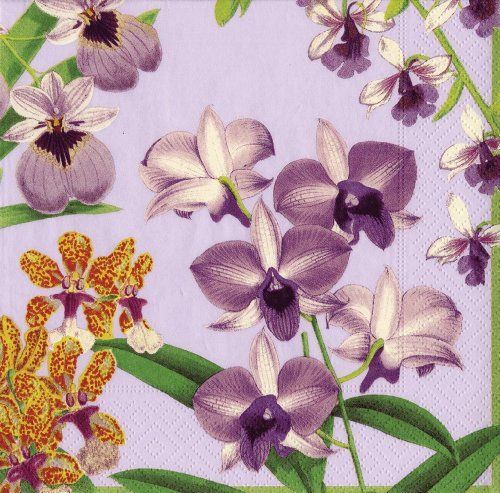Entertaining with Caspari Orchid Show Paper Luncheon Napkins, Lavender - Very pretty!!