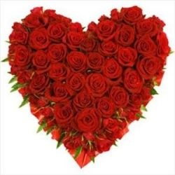 Day 1        12 Roses Bouquet  Day 2        1 Teddy Bear 6'' and 6 Flowers  Day 3        25 Roses Heart Shaped Arrangement  Day 4        36Roses Arrangement  Day 5        50 Roses Arrangement