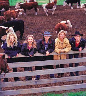Jodi, Tess, Claire, Meg, Becky - McLeod's Daughters
