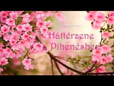 Klasszikus zene relaxációhoz, Zene stresszoldáshoz, Instrumentális zene, ♫E024 - YouTube