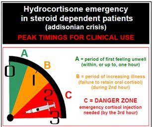 Peak Timings For Clinical Use #steroids #hydrocortisone
