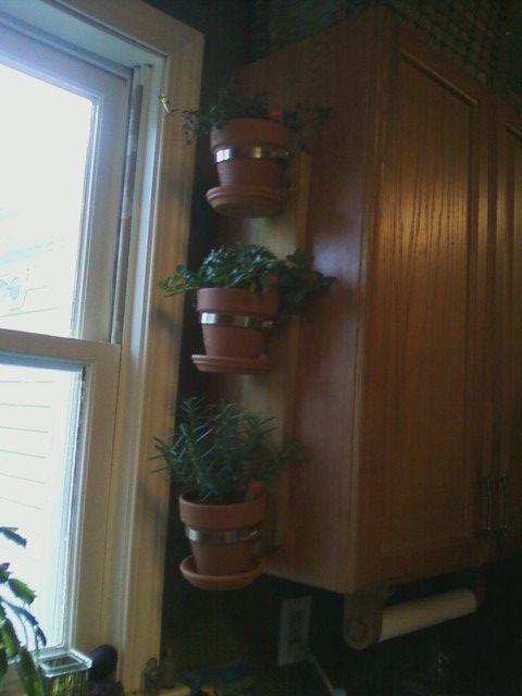 Best 25 window herb gardens ideas on pinterest growing for Eco indoor garden house