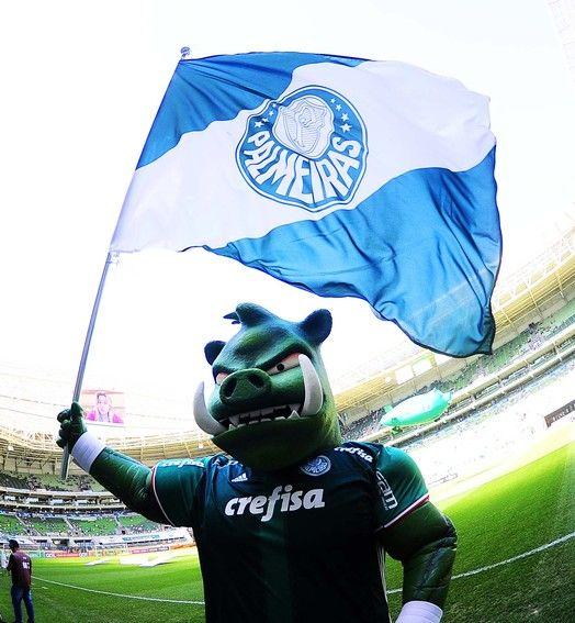 Faltam três pontos! Palmeiras vence o Botafogo e fica a uma vitória do título
