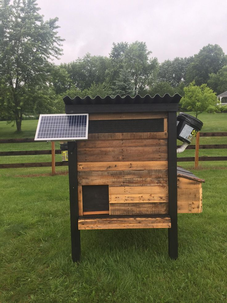 Work Smarter, Not Harder - The Lazy Chicken Coop