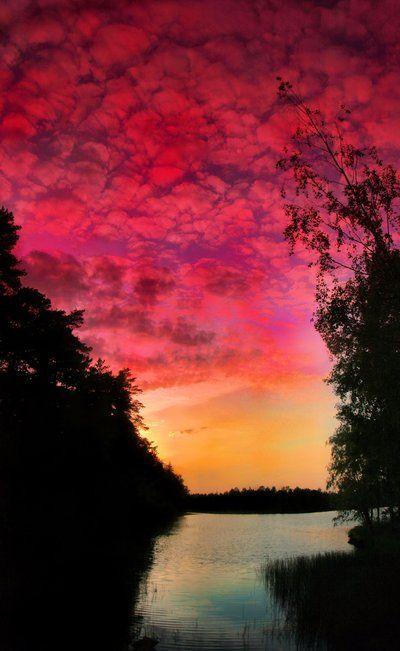Finland summer night