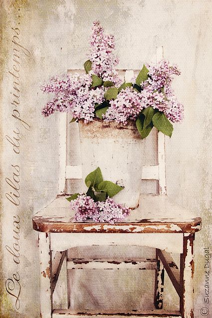 lilacs on chair