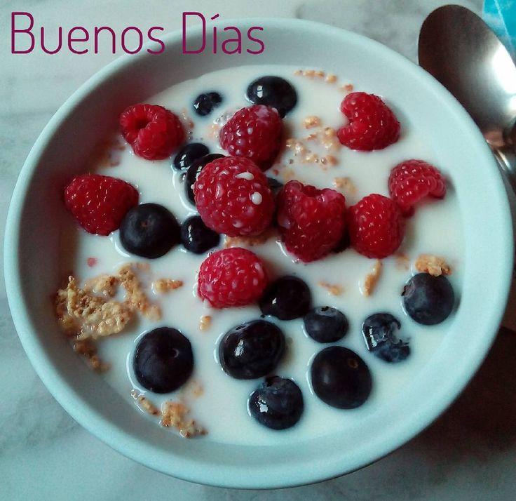#buenosdías #desayuno #breakfast #goodmorning cereales bajos en azúcar con arándanos azules y frambuesas en leche semidesnatada sin lactosa