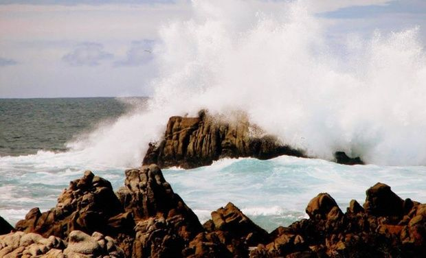 1000 Ideas About Pacific Grove California On Pinterest