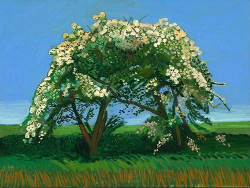 Google Image Result for http://www.katyelliott.com/beta/wp-content/uploads/2009/10/david_hockney_tree_painting.jpg