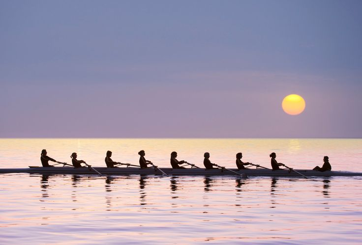 Silhouette of rowing team practicing on still lake - Silhouette of rowing team practicing on still lake