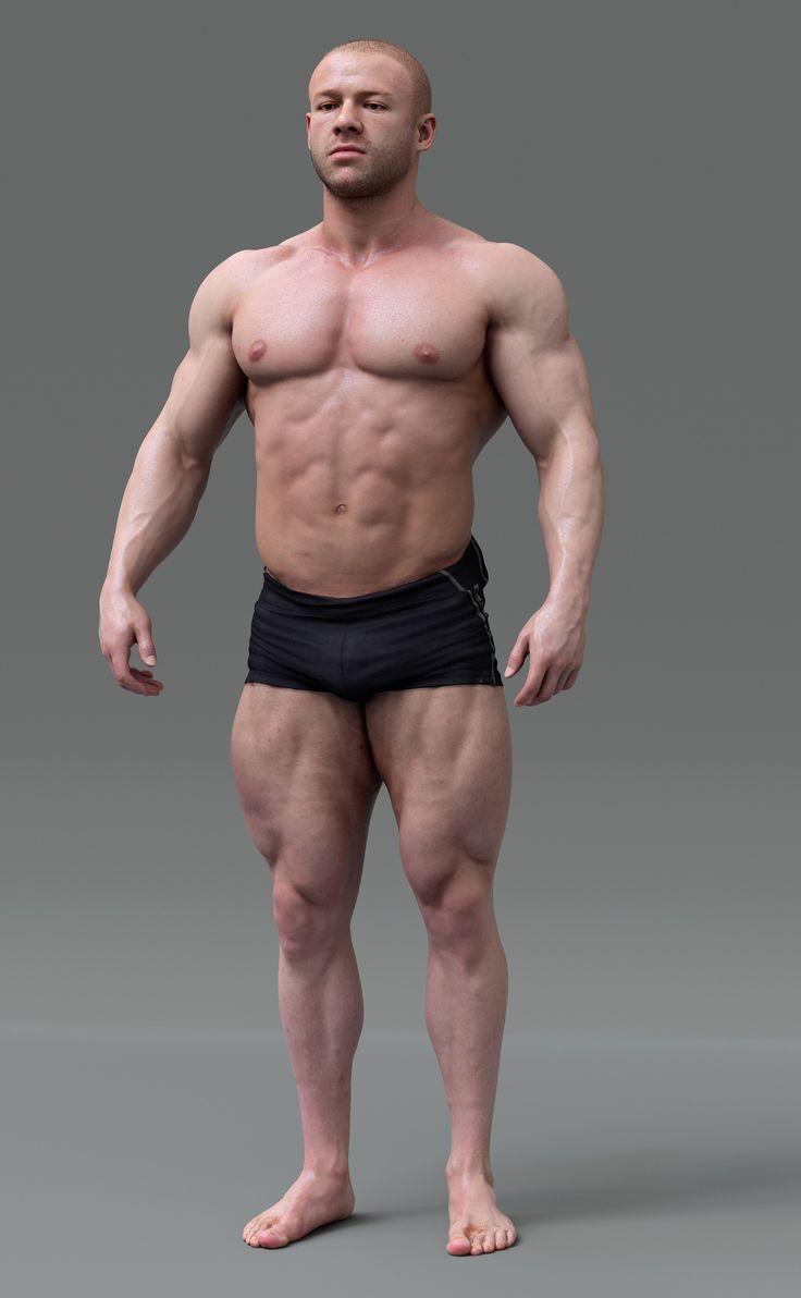 Male Anatomy Body Images - human body anatomy