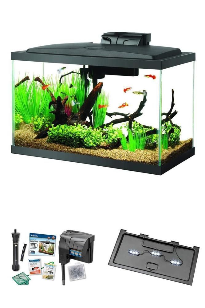 Aqueon Quiet Flow Aquarium Fish Starter Kit Vibrant Led 10 Gallon Tank Tropical 10 Gallon Fish Tank Fish Tank Fish Tank Supplies