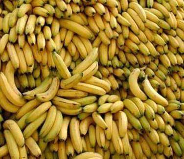 república das bananas (ex brasil)