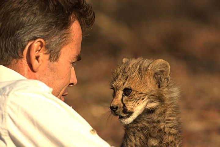 Man, Cheetah, Wild | Discovery