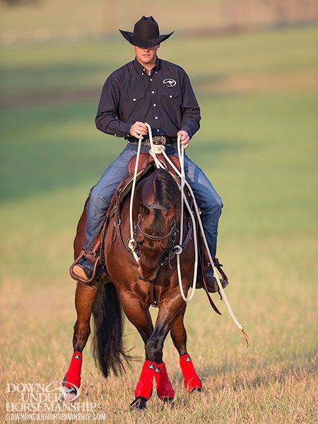Downunder Horsemanship Training Tip: Beating The Spook On The Trail - Be A Leader For Your Horse