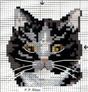 7c8d173078c4a62e1f4970fb892f59c8.jpg 309×324 pixels