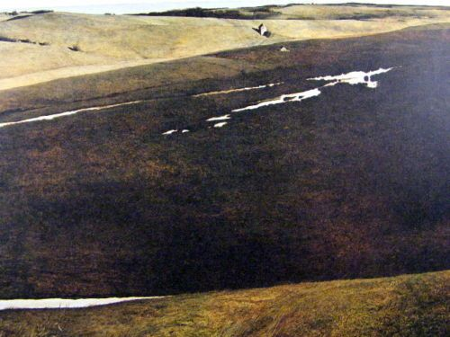 Hoffman's Slough and Flock of Crows, Pennsylvania I Gravure Print I Andrew Wyeth