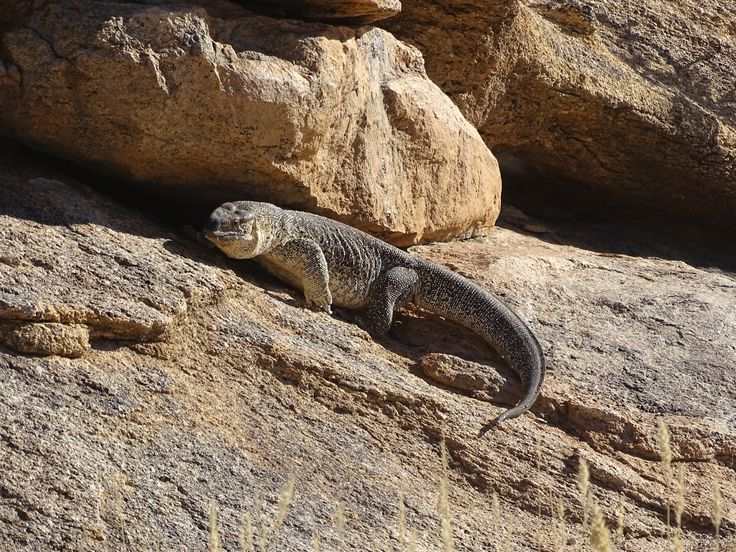 Erongo national park, Namibia. Photo: Christa Fris
