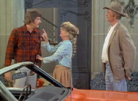 63 Best Images About The Beverly Hillbillies On Pinterest Irene Ryan Facts And Actresses
