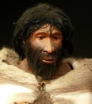 L'homme de Néandertal, reconstruction