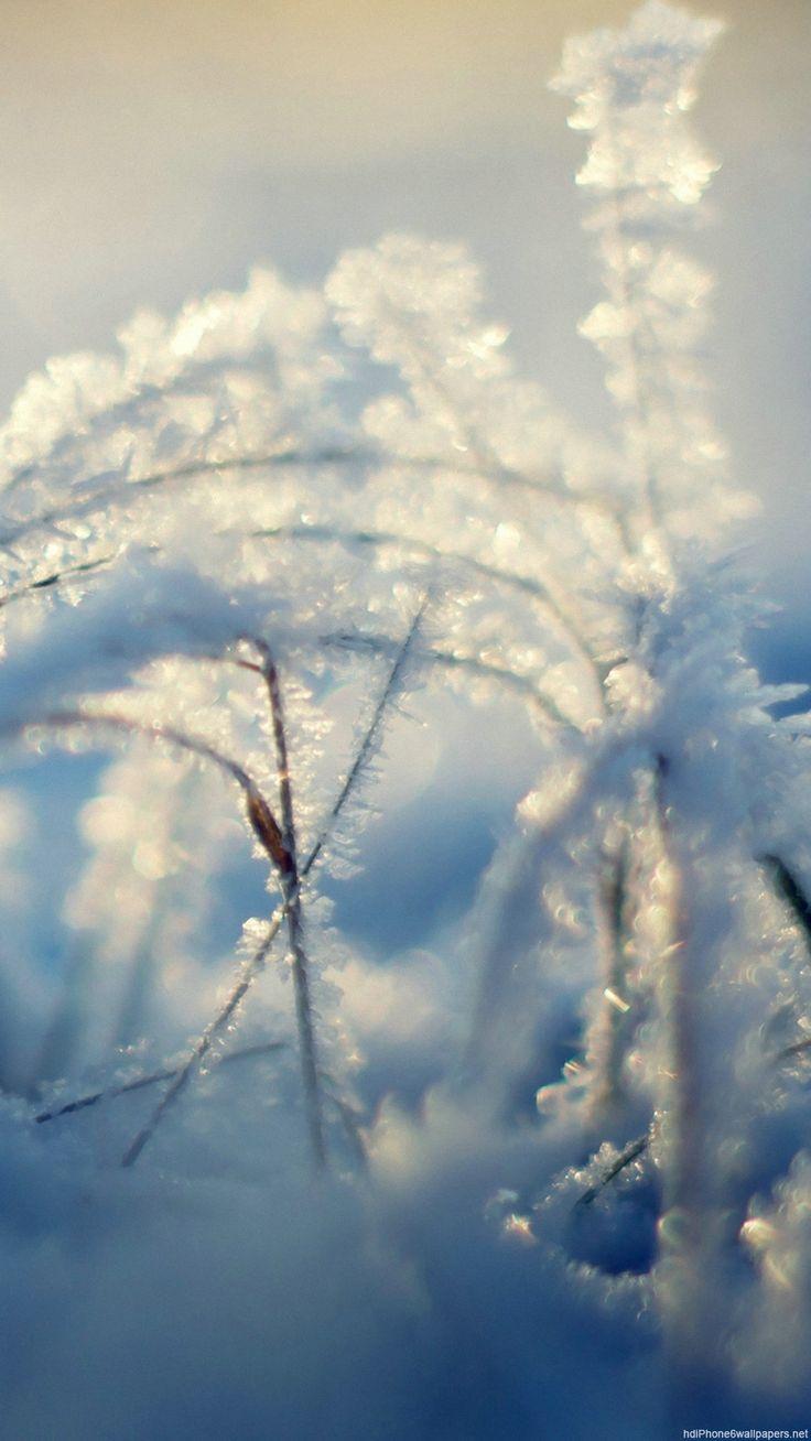 all-images.net/... Wallpaper iphone Winter-20 iPhone X Wallpaper 858920960162063848 7