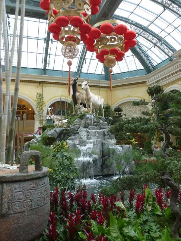 Bellagio Conservatory Chinese New Year. Bellagio ConservatoryBotanical  GardensConservatoriesLas ...