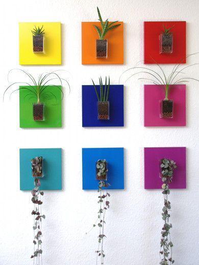 Tableaux végétaux MiniKipos - Les Sublimes