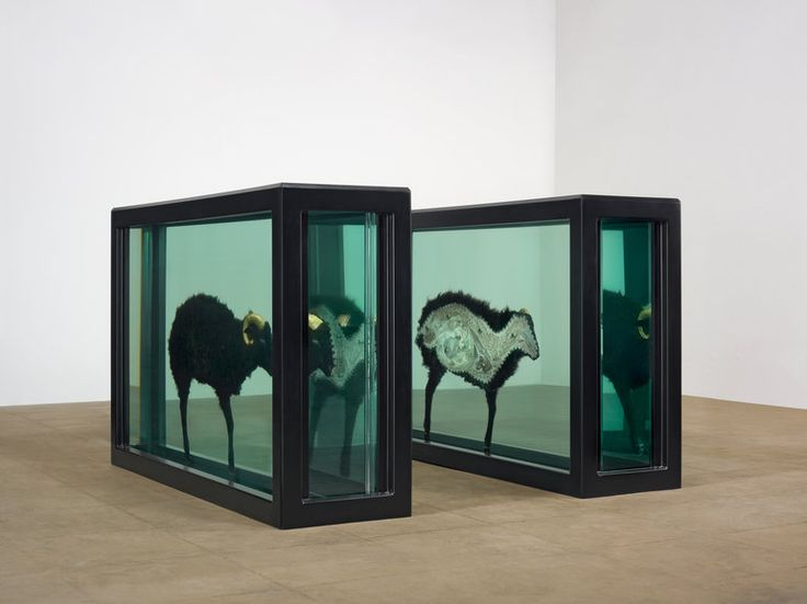 Damien Hirst - The Black Sheep with Golden Horns (Divided), 2009