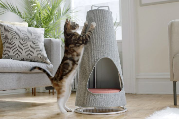 https://www.kickstarter.com/projects/wiskicat/the-cone-by-wiski-scratch-beautifully They say if you take a piece of tape and make a square on your floor, your pet cat will automatically sit inside it. Cats
