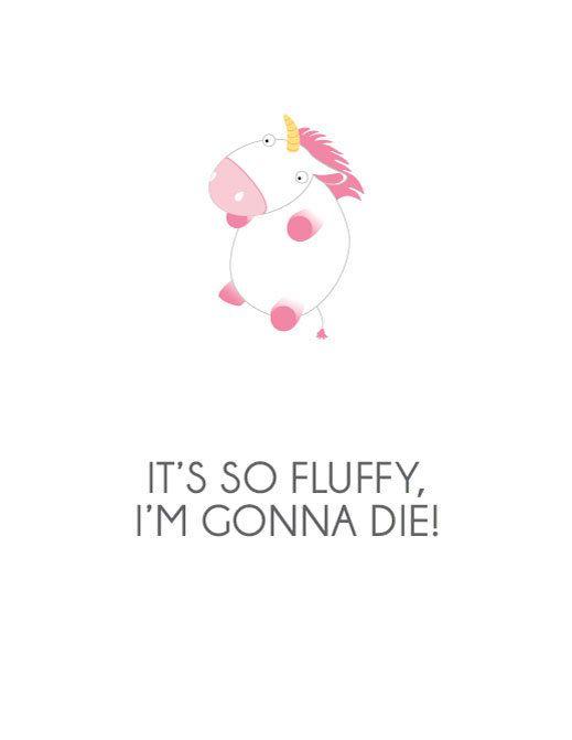 IT'S SO FLUFFY IM GONNA DIEEEEEE