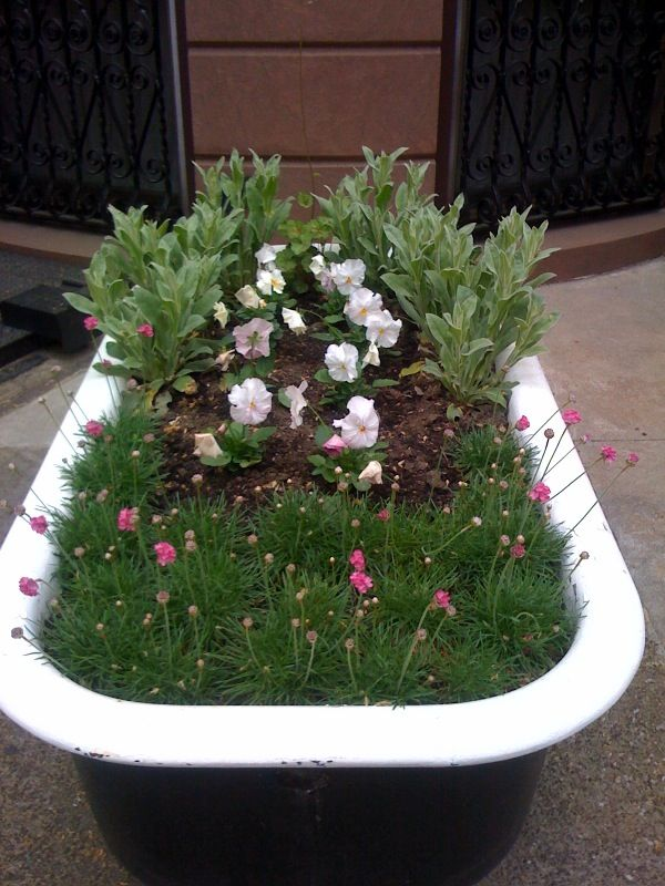 Hereu0027s An Old Bathtub Turned Container Garden