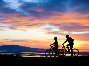 Provence Cycling Holiday  website - Coustellet