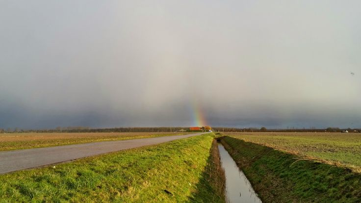 Zuid-Beijerland, Holland (NL)