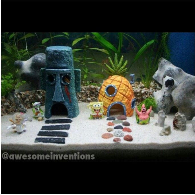 how to get rid of ich in freshwater tank