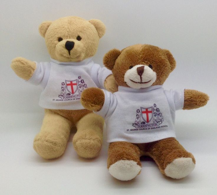 School bears, attendance rewards, mascots or leavers gifts