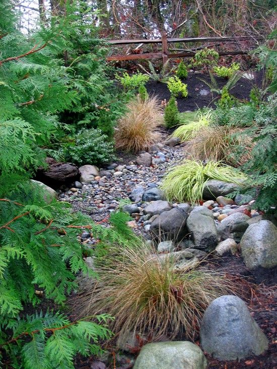 This dry creek bed looks real. Still, it is the perfect example of a  naturalistic dry stream bed. Notice the amzing Aussie fern on the left. - 56 Best Dry Creek Beds Images On Pinterest Dry Creek Bed