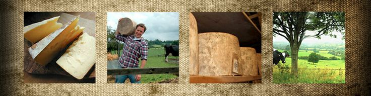 Westcombe Dairy | Traditional Somerset Cheesemakers