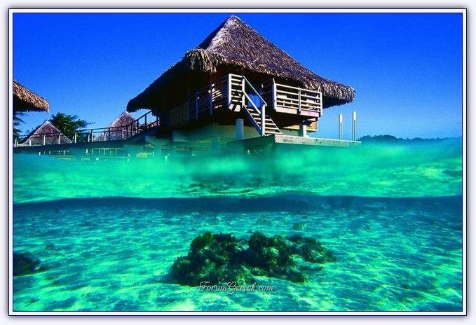 Bora Bora Adası   Fransız Polinezyası - Forum Gerçek