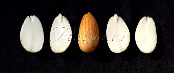 How to Sprout Almonds?