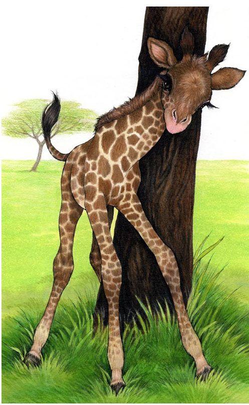 Best 20 Giraffe Art Ideas On Pinterest Giraffe Painting