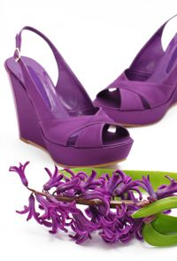 Purple Wedges Source: iStockphoto Permission: Licensed