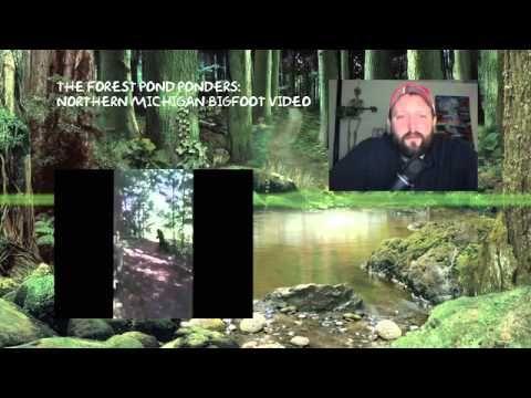 Northern Michigan Bigfoot Footage