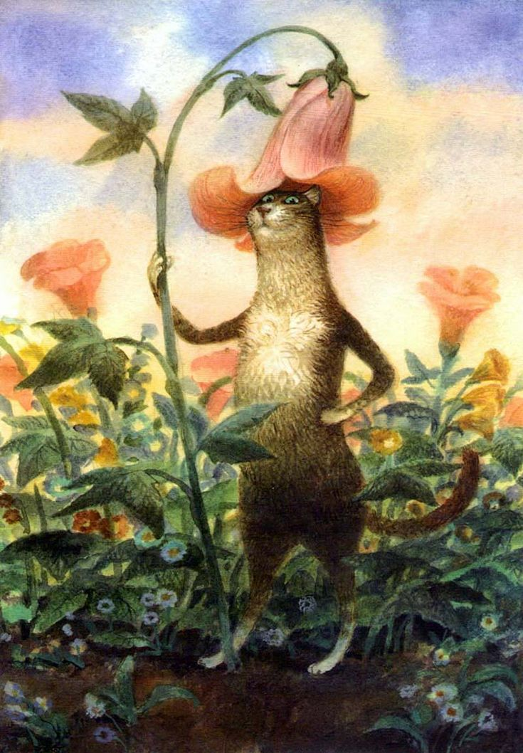 Картинки петербургские коты владимира румянцева, картинка